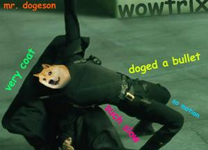 Doge Matrix
